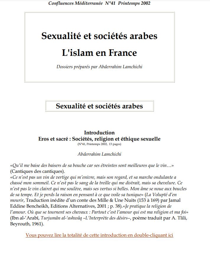 Sexualité et sociétés arabes L'islam en France